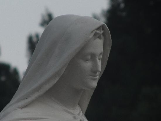 Trappistine Monasteries: トラピスチヌのマリア像