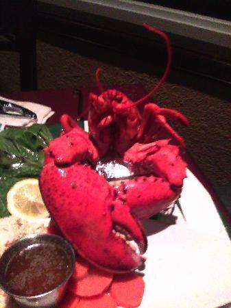 Harbour Restaurant : My dinner...