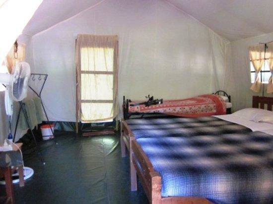 Doddamakali Nature Camp : Inside our room..