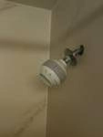 Embassy Suites by Hilton Arcadia Pasadena Area: Shower head