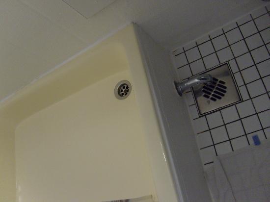 Müritz Hotel: Ablauf der Dusche