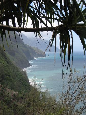 Kalalau Trail: looking north along NaPali from the trail