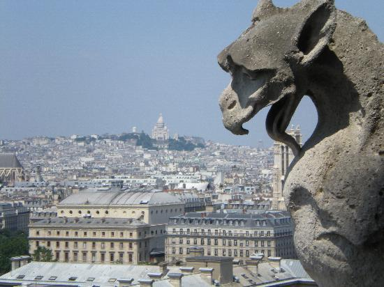 Paris, Frankrig: View from the top of Notra Dame