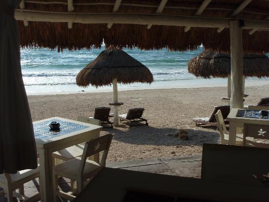 Villa Las Estrellas: table with a view