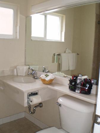 Metropolitan Inn: Bathroom