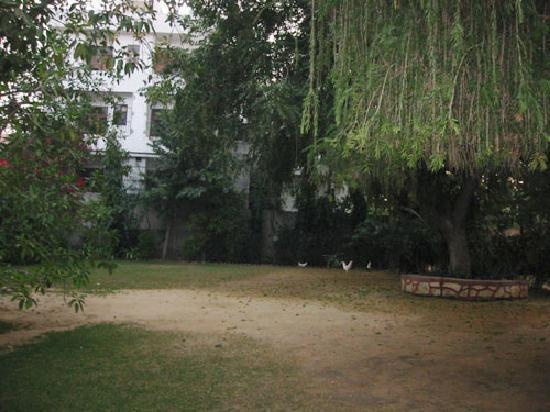 Shahar Palace: 広い庭