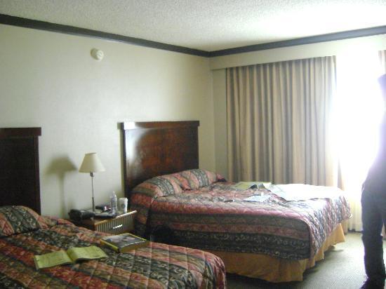 مياكو هوتل لوس أنجلوس: Standard room