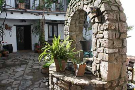 Posada Rural La Casa Grande : Courtyard garden