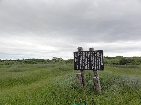 Midagahara Wetlands