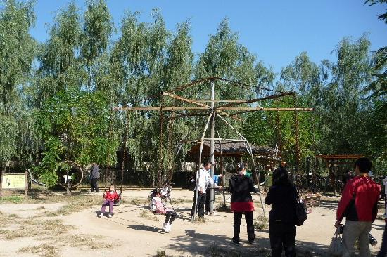 Xiangjulou : Playgrounds for youngsters
