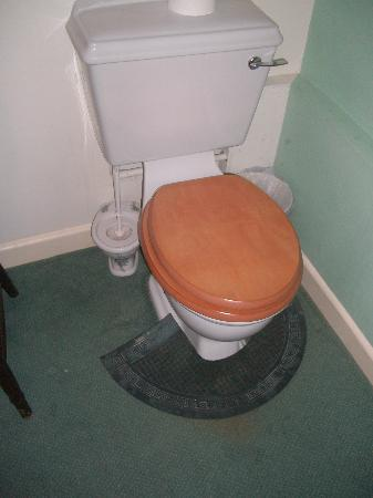 Ralegh's Cross Inn: Hotel room toilet