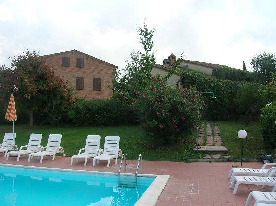 B&B Il Greppo: pool-side