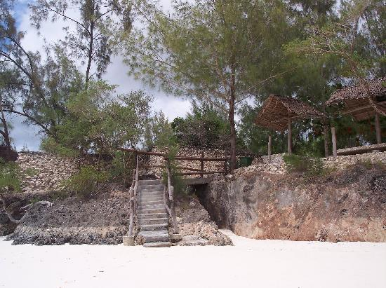 Nature Safari Lodge: The steps down to the beach