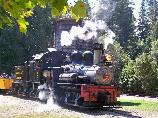 Henry Cowell Redwoods State Park: Roaring Camp and Big Trees Railroad