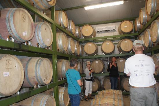 La Casa Colonica: Wine tasting