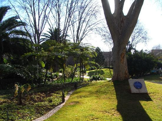 Sunnyside Park Hotel: Hotel grounds