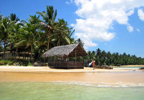 Image result for mirissa beach sri lanka