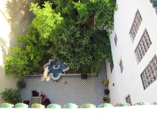 Riad Medina: Courtyard and garden, Riad R´Mila
