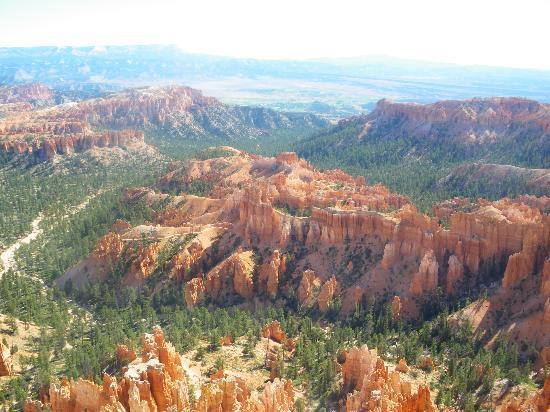 beautifull Bryce