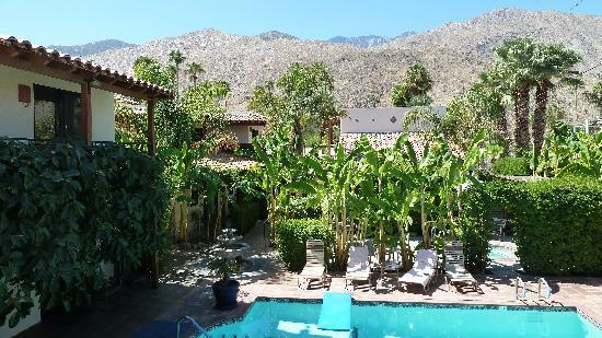 Hotel California: Garten