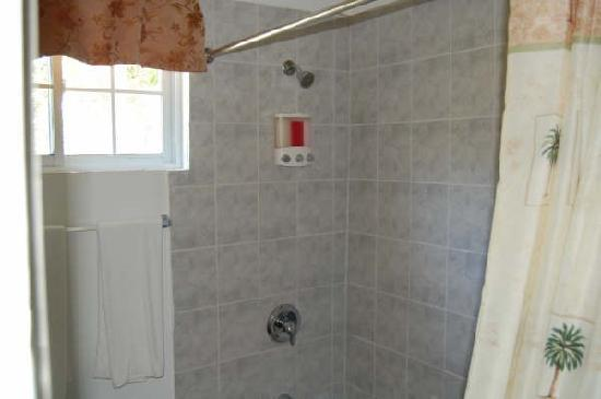 DreamsNegril: Titled Shower with amenities