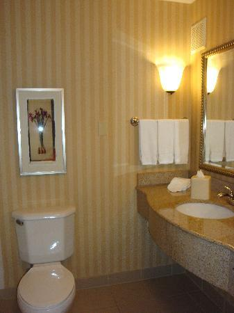 Hilton Garden Inn Anchorage: bath