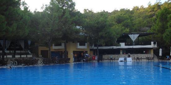 VClub Valtur: bar piscina