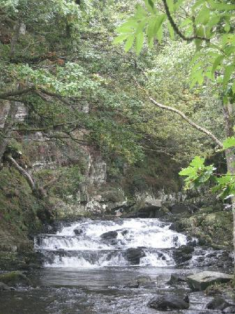 The Victoria Inn: Nantcol Waterfalls - only a 10 min drive from Llanbedr