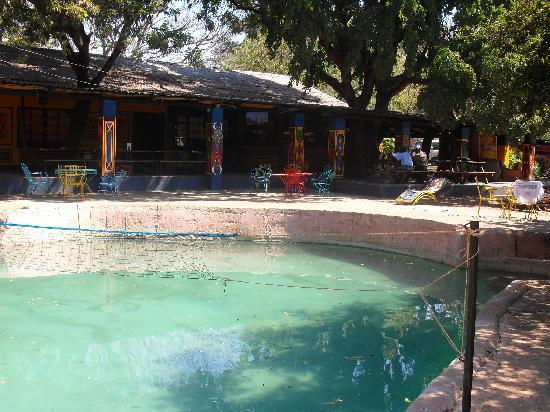Shoestrings Lodge: Bar and swimming pool