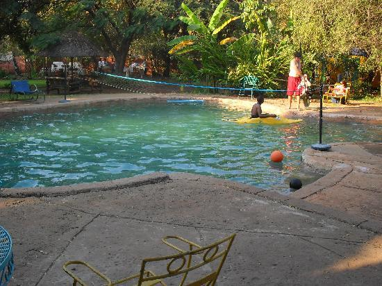 Shoestrings Backpackers Lodge: Swimming pool