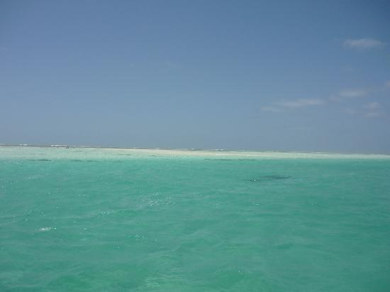 Sandies Tropical Village: safari blu...