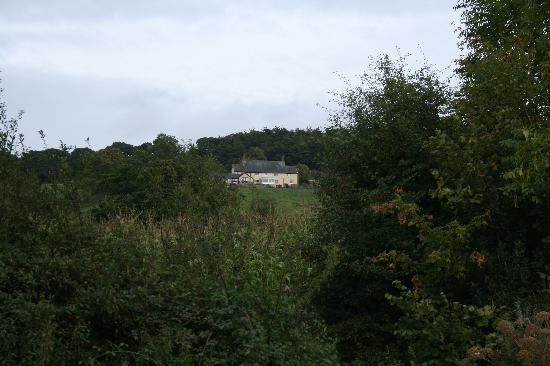 Courtmoor Farm Cottages: Courtmoor from the road to Upottery