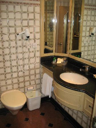 Hotel Annapurna: Badezimmer
