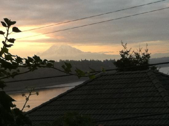 Three Tree Point Bed and Breakfast: Mt. Rainier from bedroom