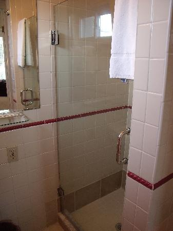 Carpe Diem Guesthouse & Spa: Shower-Emily Dickinson Room