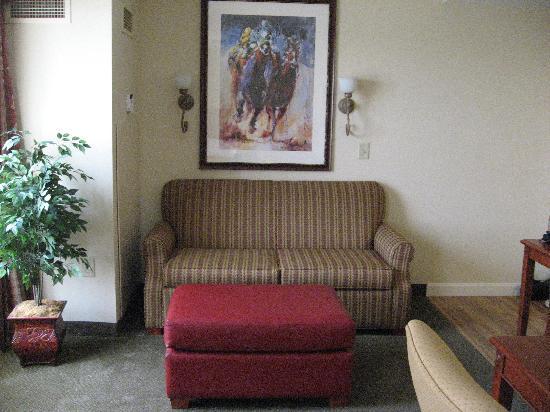 Homewood Suites by Hilton Lexington - Hamburg: Sitting area