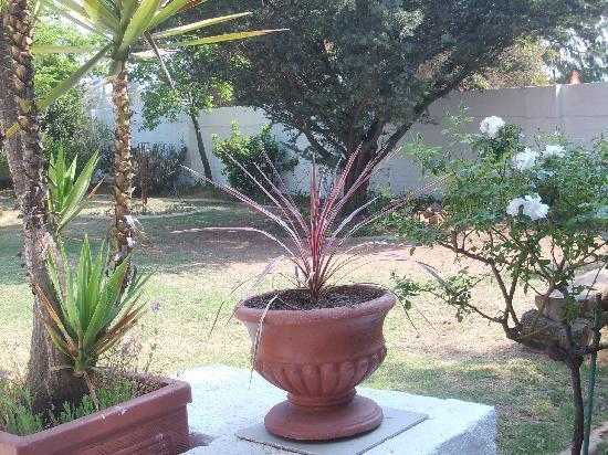 ONESANDRA: The Garden