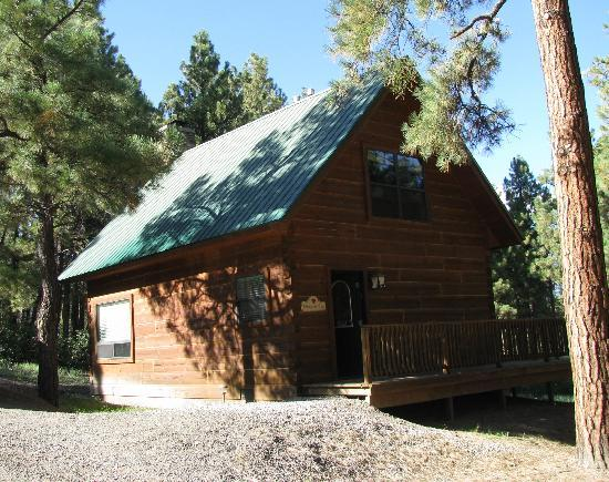 Hart's Rocky Mountain Retreat: Hummingbird Cabin