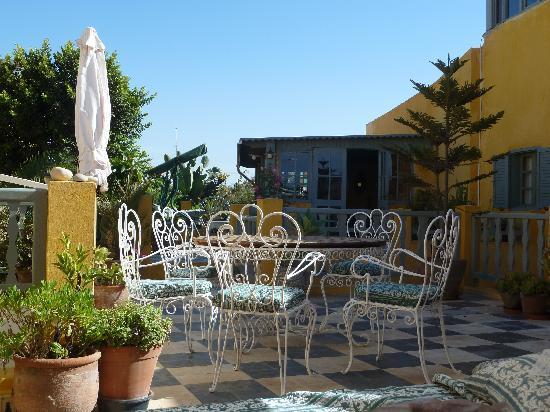 Dar Beldi : Roof terrace