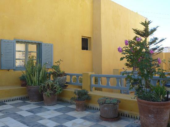 Dar Beldi : Roof terrace 2