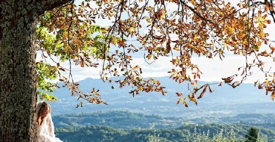 Relais Villa Belpoggio: more views..