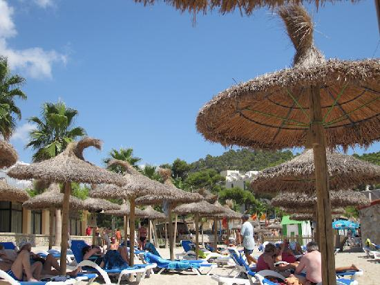Grupotel Playa Camp de Mar: The lovely beach. Better than the hotel pool. But only a stone's throw away.