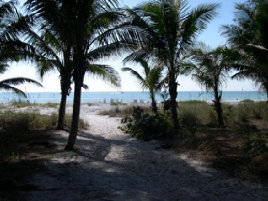 Cannons By The Sea Cottages : private beach
