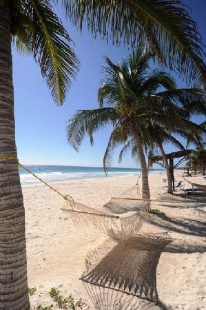 Las Ranitas Eco-boutique Hotel: One of the best beaches in the whole world