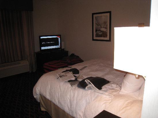薩斯喀徹爾省堡壘漢普頓旅館照片