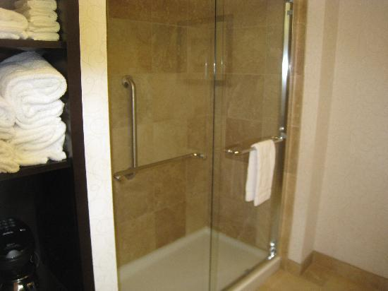 Hampton Inn by Hilton Fort Saskatchewan: Bathroom Shower
