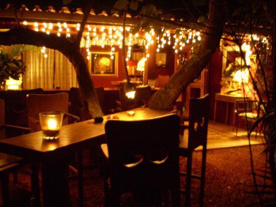 Pousada Terra dos Goitis: Bar