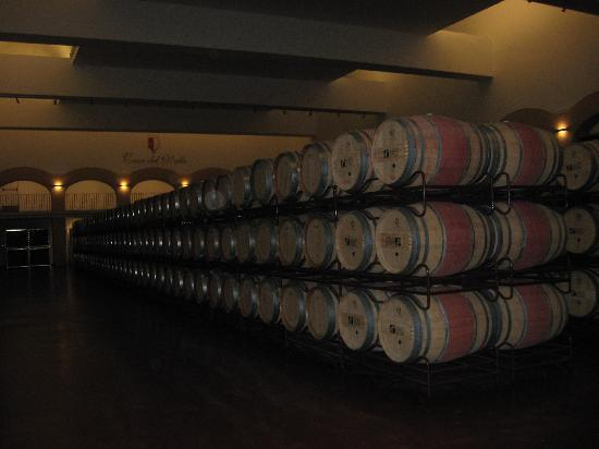 Vinophoria Day Tours: Wine aging! For your consumption!