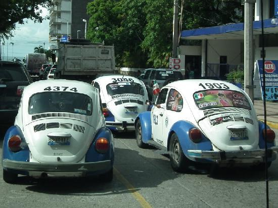Tour by Van : Never seen so many VW beetles...