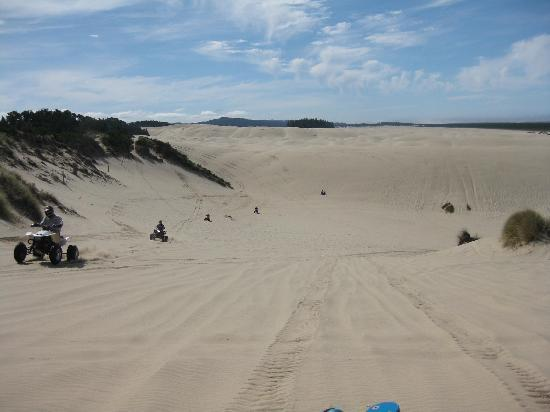 Florence, Oregón: dunes at Jessie M. Honeyman State Park
